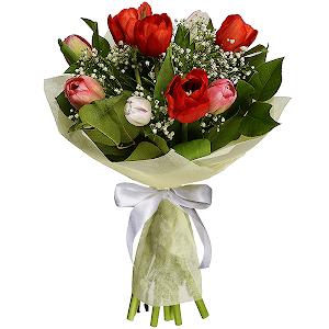 Где в красногорске можно купить горшечные цветы в подарок экзотические цветы купить в минске серебрянка
